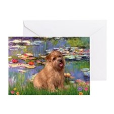 Lilies /Norfolk Terrier Greeting Card