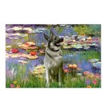 Lilies / Nor Elkhound Postcards (Package of 8)