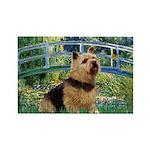 Bridge / Norwich Terrier Rectangle Magnet (10 pack