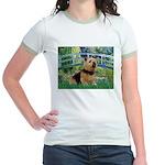 Bridge / Norwich Terrier Jr. Ringer T-Shirt