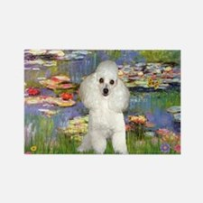 Lilies /Poodle (w) Rectangle Magnet