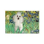 Irises / Poodle (w) Rectangle Magnet (10 pack)