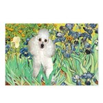 Irises / Poodle (w) Postcards (Package of 8)