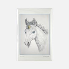 Unicorn Foal ~ Rectangle Magnet