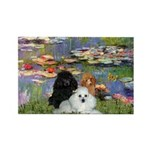 Lilies / 3 Poodles Rectangle Magnet (10 pack)