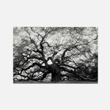 Cute Angel oak tree Rectangle Magnet