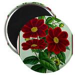Vintage Flower Print Magnets
