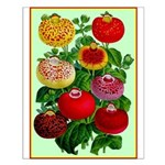 Chinese Lantern Vintage Flower Print Small Poster