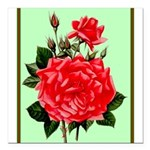 Red, Red Roses Vintage Print Square Car Magnet 3