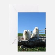 Beanie and Bailey's Greeting Card