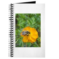 Bee Blank Book /Journal