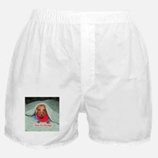 Red Dachshunds Boxer Shorts