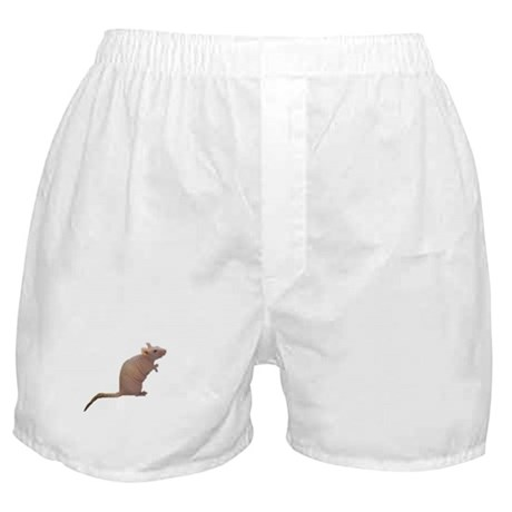 Curly - the Hairless Rat Boxer Shorts