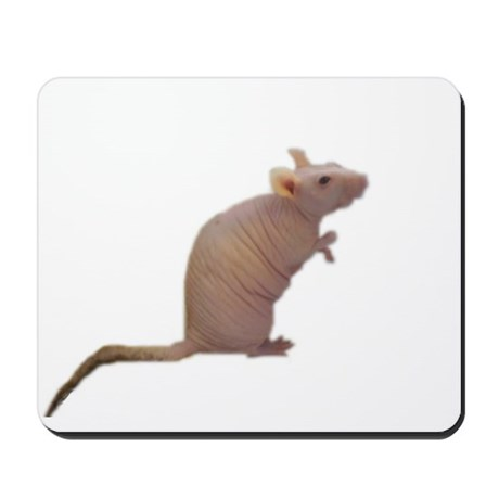 Curly - the Hairless Rat Mousepad
