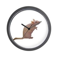 Curly - the Hairless Rat Wall Clock