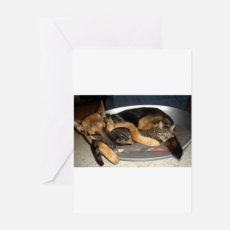 tail to tail Greeting Cards
