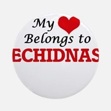 My heart belongs to Echidnas Round Ornament