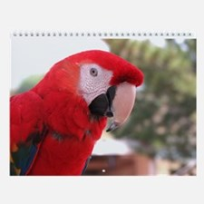 Helaine's Parrot Wall Calendar
