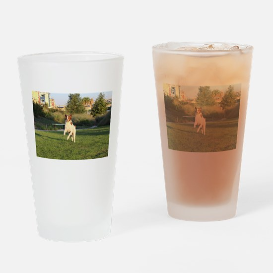 Leaping Brittany Spaniel Drinking Glass