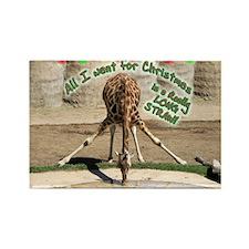 Xmas Drinking Giraffe Rectangle Magnet (10 pack)