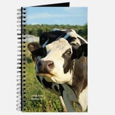 curious cow, 2 Journal
