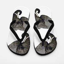 HERD Flip Flops
