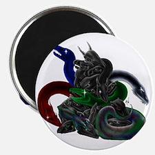 5-Color Evil Dark Dragon Takhisis Skull Magnet