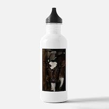baby calf Water Bottle