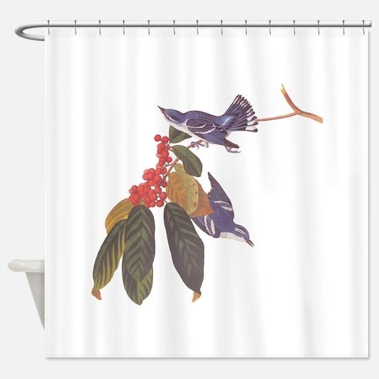 Cerulean Warbler Vintage Audubon Birds Shower Curt