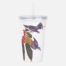Cerulean Warbler Vintage Audubon Birds Acrylic Dou