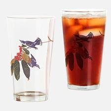 Cerulean Warbler Vintage Audubon Birds Drinking Gl