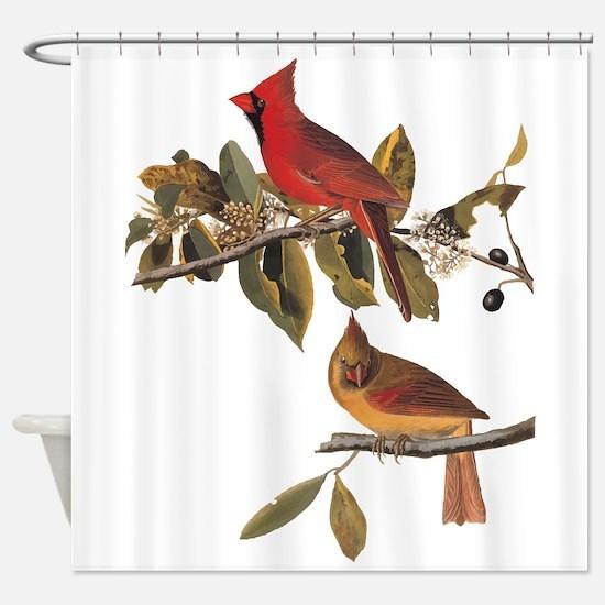 Cardinal Grosbeak Vintage Audubon Birds Shower Cur