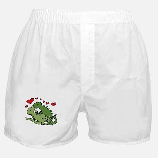 Kissing Dinosaurs Boxer Shorts