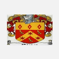 Finn Coat of Arms Magnets (10 pack) Magnets