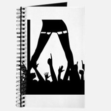 Pole Dancer And Audience Journal
