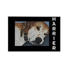Harrier Dog Rectangle Magnet