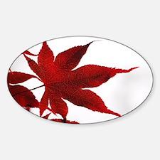Cute Japanese maple Decal