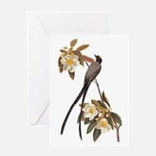Fork-Tailed Flycatcher Audubon Vintage Bird Greeti