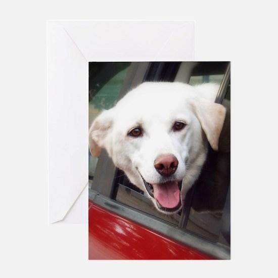 Dog Smile Greeting Cards