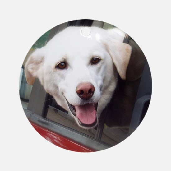 Dog Smile Round Ornament