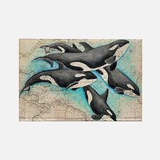 Cute I love killer whales Rectangle Magnet