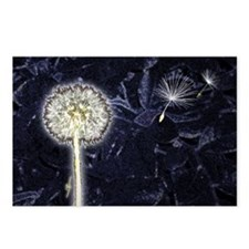Dandelion Puff Postcards (Package of 8)