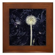 Dandelion Puff Framed Tile