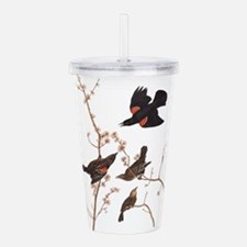 Red-Winged Starling Vintage Audubon Acrylic Double