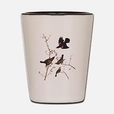 Red-Winged Starling Vintage Audubon Shot Glass