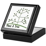 Plant A Tree Keepsake Box