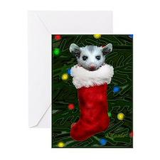 Possum in Stocking Greeting Cards (Pk of 20)