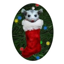 Possum Stocking Oval Ornament