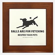 Neuter Your Pets Framed Tile