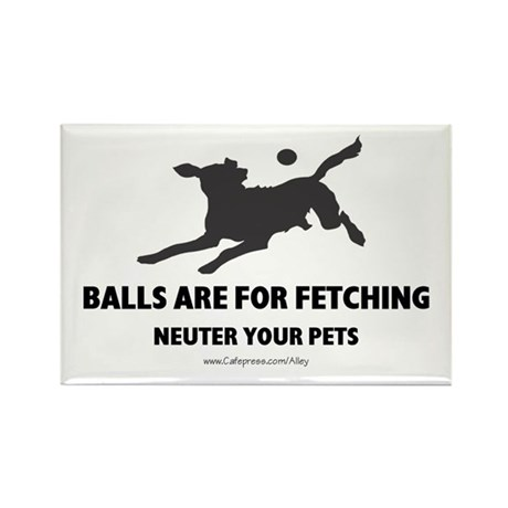 Neuter Your Pets Rectangle Magnet (10 pack)